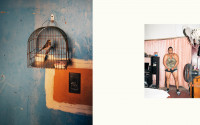 Collage of two photos: a bird in a cage in a blue room on the left, a man in shorts and tank top in a room with pink curtains on the right.